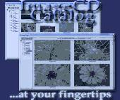 ImageCD Catalog Screenshot