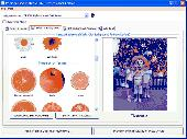 Personalised Plates 2006 Screenshot