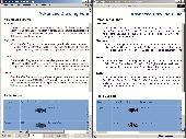 PDF2Many ActiveX/.NET Screenshot