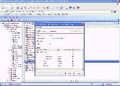 Screenshot of Visual WebGui Enterprise Manager