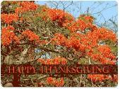 Animated Thanksgiving Time Wallpaper Screenshot