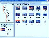 DisCat Screenshot