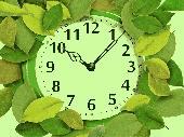7art Foliage Clock screensaver Screenshot