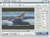 AVI to FLV/GIF Converter Screenshot
