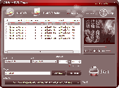 All Free DVD Ripper Screenshot