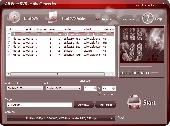 All Free DVD to AVI Converter Screenshot