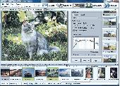 Screenshot of Artensoft Photo Editor