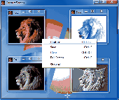 Screenshot of CaptureScreen