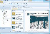 Chrysanth WebStory Screenshot