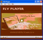 DRB FLV Player Screenshot