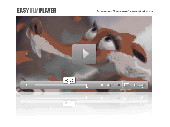 Ease FLV Player by FD24 Screenshot