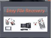 Screenshot of Easy File Recovery