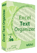 Excel Text Organizer Screenshot