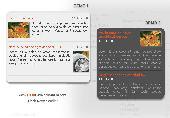 Flash Scroller for News Screenshot
