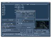 Free DVD Xvid Ripper Screenshot