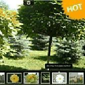 Fullscreen Showcase Gallery v1 Light Screenshot