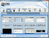 Screenshot of Gecko Computer Monitoring Software