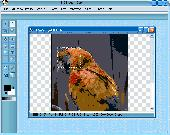 Image Studio Xpress Screenshot