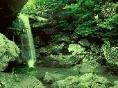 Jungle Falls Screenshot