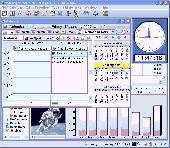 MSD Organizer Portable Freeware Screenshot