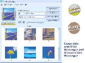 MSN Slide Max Screenshot