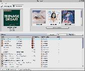 Neat Music Screenshot