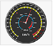 Nevron Gauge for SSRS Screenshot