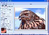 ProPoster Screenshot