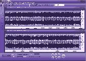 Screenshot of ROBUST Audio Editor