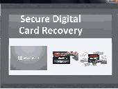 Secure Digital Card Recovery Screenshot