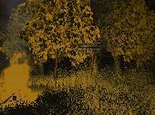 Slender Dark Forest Screenshot