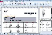 SmartVizor Bill Statement Batch Printing Software Screenshot