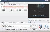 UM DVD Ripper Screenshot