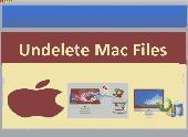 Undelete Mac Files Screenshot