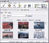 UseNeXT Screenshot