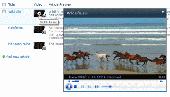 Video Column & Web Part Screenshot