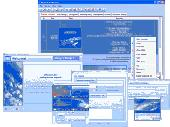X-Organizer.com MP3 Music Organizer Screenshot