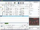 Xilisoft DVD to AVI Converter for Mac Screenshot