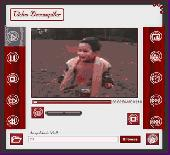ZFTP Video Decompiler Screenshot