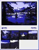 Active Image Viewer Screenshot