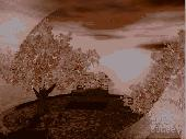 AD Autumn Sunset - Animated 3D Wallpaper Screenshot