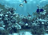 Aquarium Animated Wallpaper Screenshot