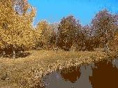 Autumn Graze Screensaver Screenshot