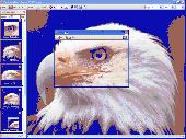 Capture View Screenshot