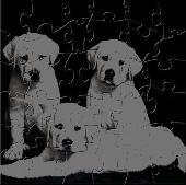 Cute Puppies Puzzle Screenshot