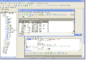 DreamCoder for MySQL Enterprise Freeware Screenshot