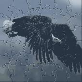 FTLR Soaring Eagle Puzzle Screenshot