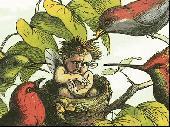 In Fairyland Screenshot