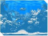 Living Marine Aquarium Screenshot