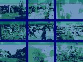 Perfect IP Cam Image Streaming Toolkit Screenshot
